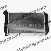 Genuine Radiator Cooler Aluminum Silver GT650 GT650R GT650S