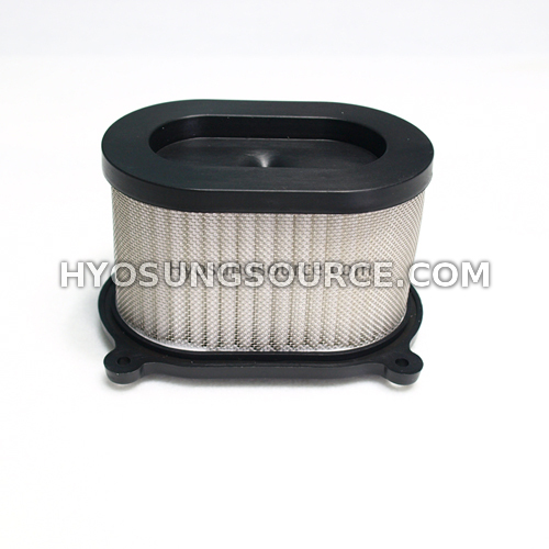 Air Filter GT250 GT650 GT650R GV650 (For both Carb & EFI Models)